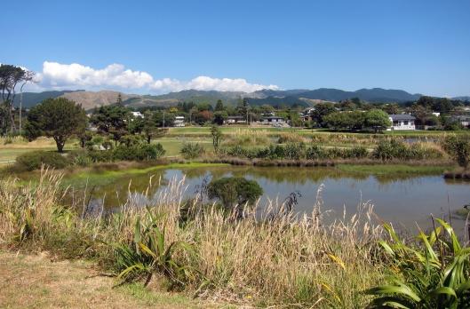 Waikanae river