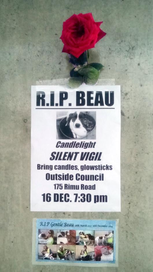 Beau memorial
