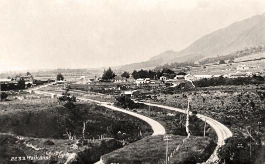 Waikanae Rail Road 1890s