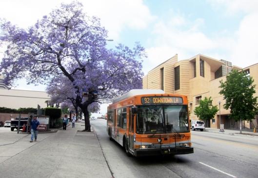 lametro-bus