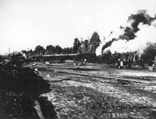 Waikanae 1880s