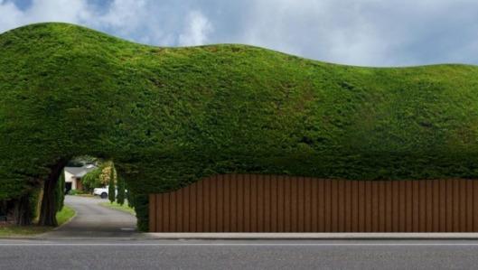 hedge artists impression