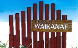 WaikySign