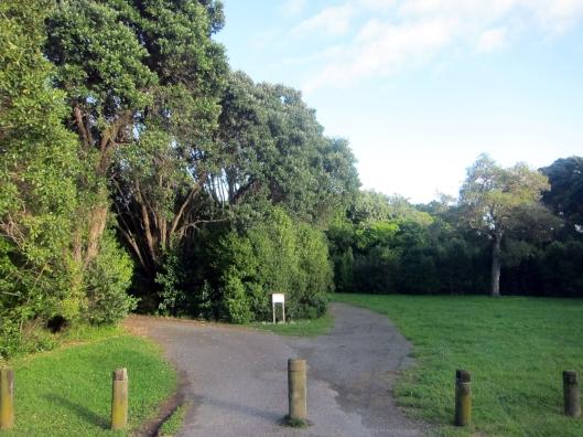 Ngaio Road Park