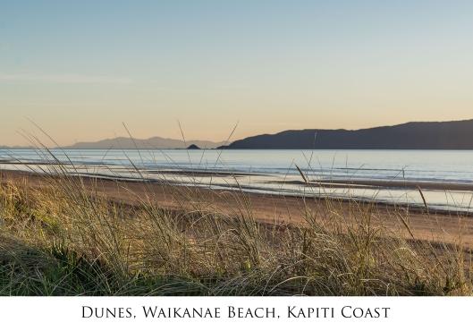 Waikanae-Beach