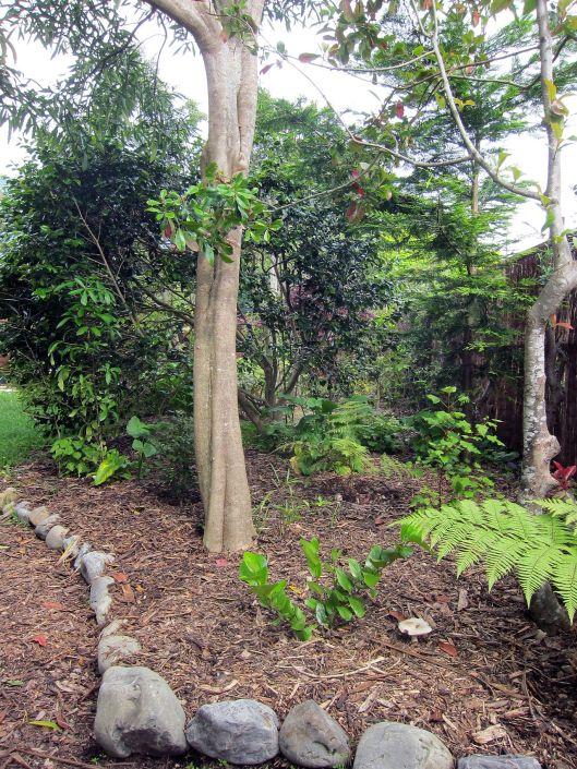 waikanae garden corner