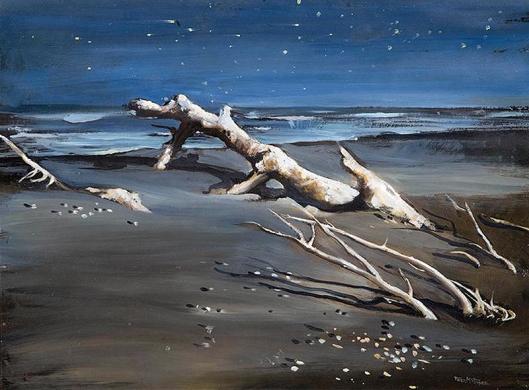 Driftwood Waikanae Peter McIntryre