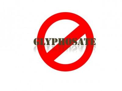 glyphosate-test-400x299