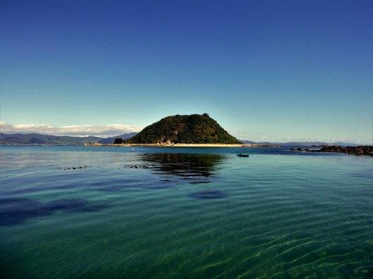 Tahoramaurea of Kapiti Island
