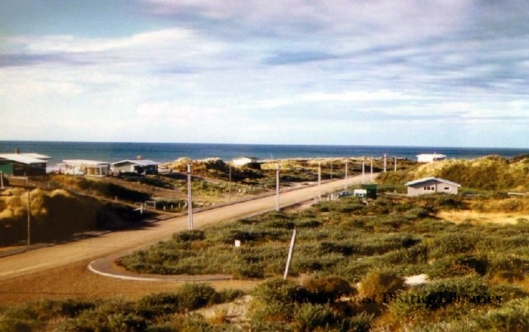 Waikanae Field Way William St 1960s