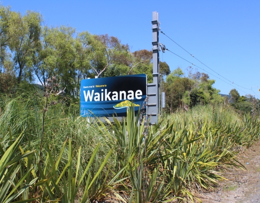 Waikanae Welcome