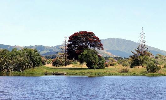 Waimanu lagoon waikanae