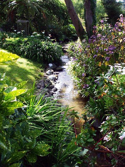 Wallace Trickett garden