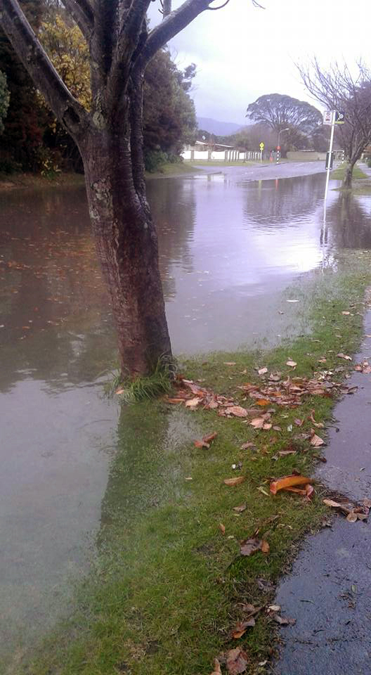 belvedere-flood