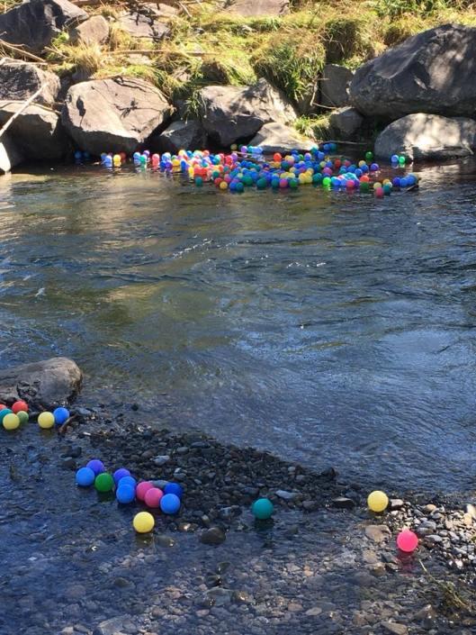 Waikanae River balls