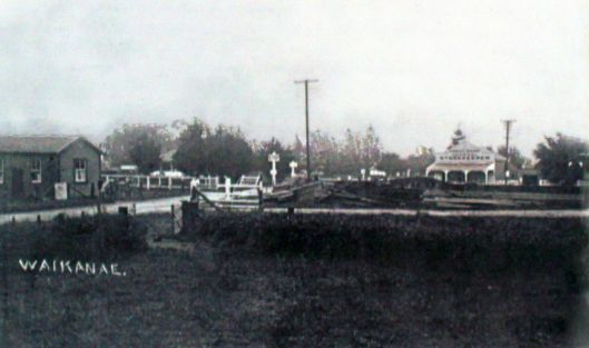 Waikanae looking west 1912