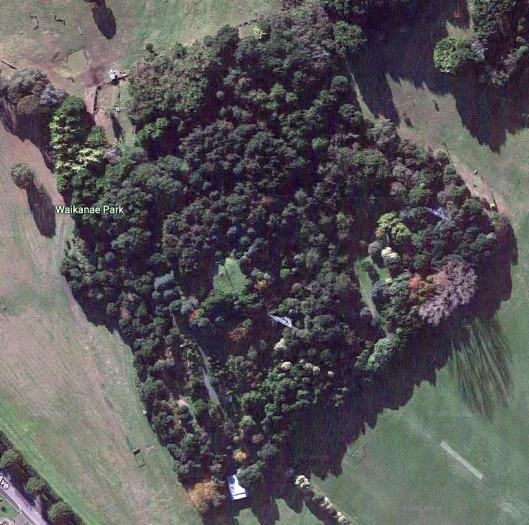 Waikanae Park aerial