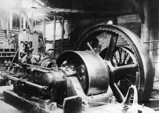Waikanae Browns Flaxmill Engine 1916