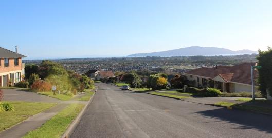 Waikanae Winara upper view