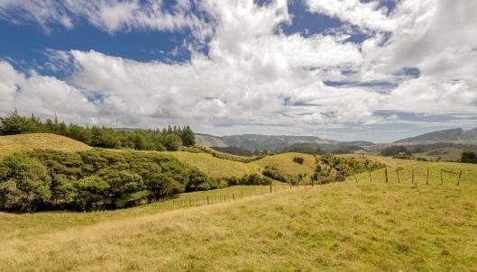Reikorangi Rural Idyll