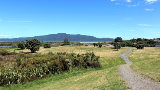 Waikanae Estuary East