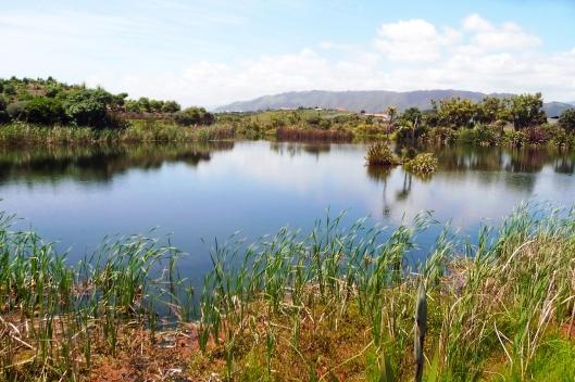 Waiky lagoun