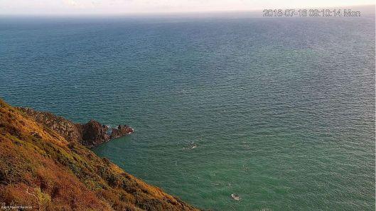 Kapiti Island webcam 2