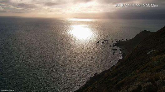 Kapiti Island webcam