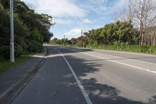 Waikanae-bridge-to-Te-Moana