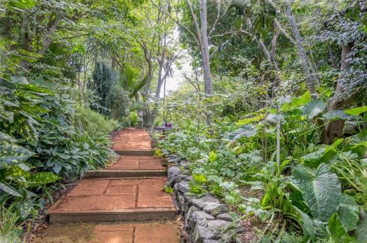 Waiky garden path