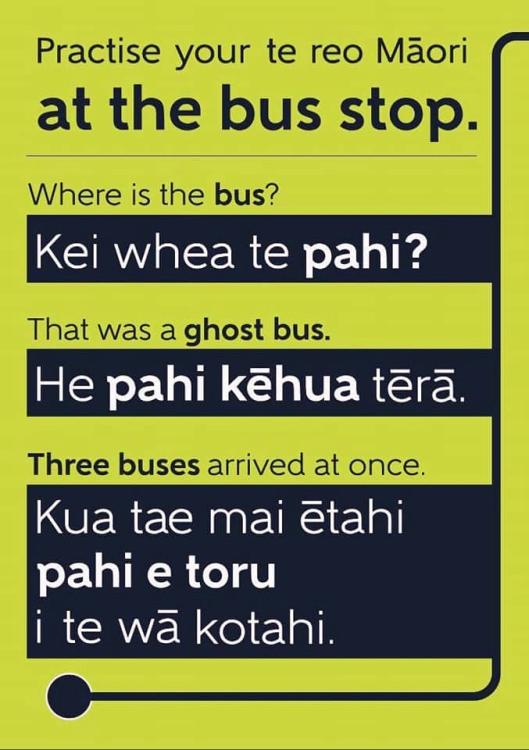 Busstop Te Reo