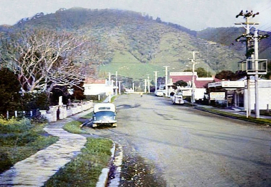Waikanae 1960s by Ray Russell