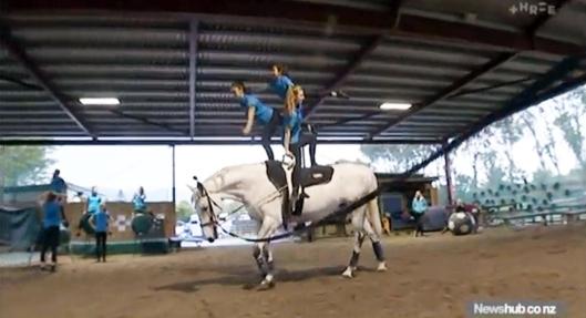 Waikanae equestrian