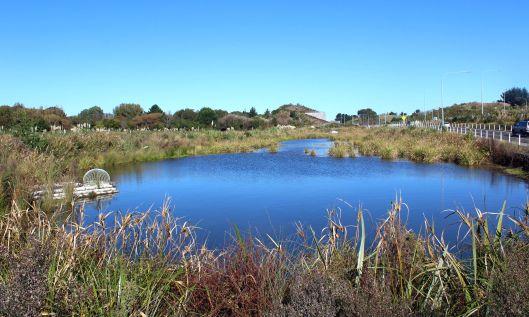 Ewy Te Moana Rd pond