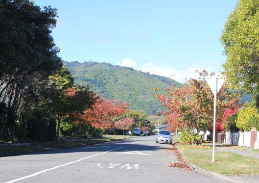 Waiky autumn