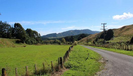 Rangiora Road