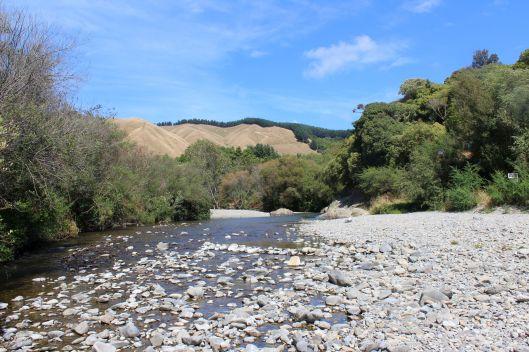 Waiky East river rocks