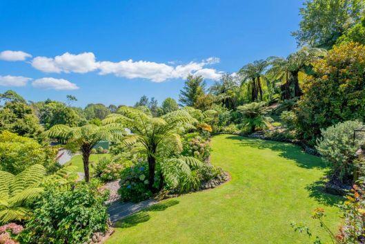 Waiky jardino 2