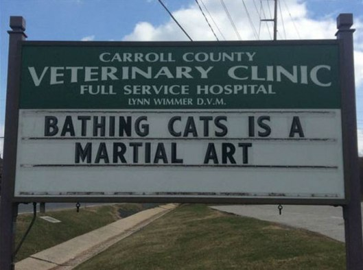 funny-cat-veterinary-clinic-signs-31-5d1a030c8de83__700