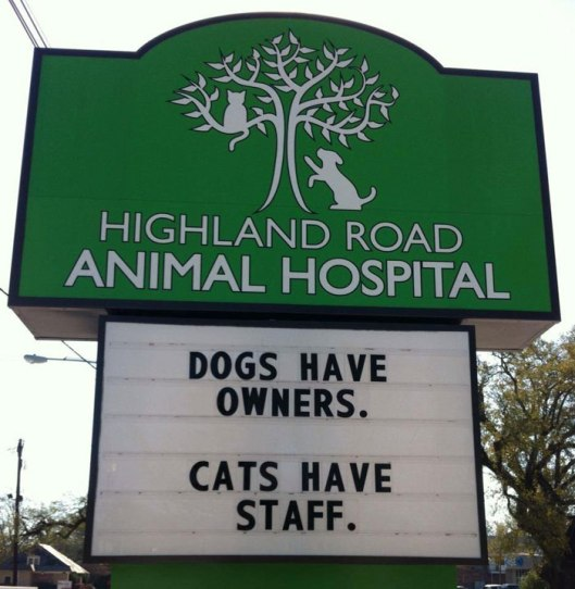 funny-cat-veterinary-clinic-signs-5-5d19ee1168924__700