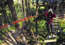 Adrenalin Forest 1