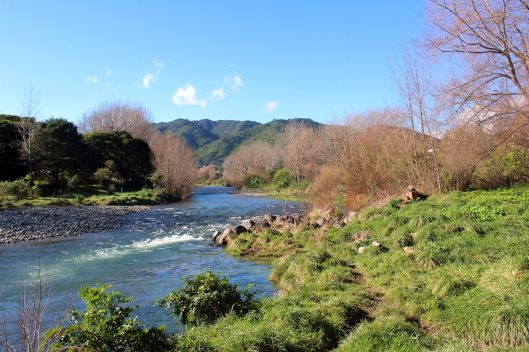 Waiky River winter