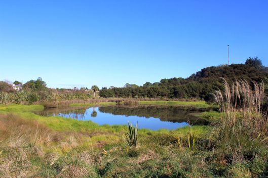 Weggery pond
