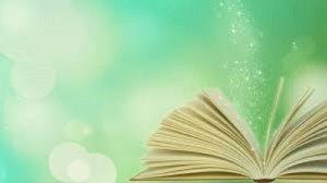 Kapiti book budget