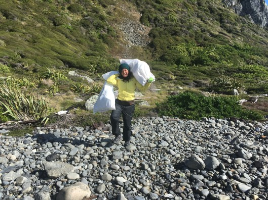 Kapiti Coast trash