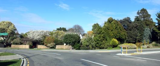 Ngarara and Park