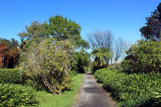 Otaihanga river walk