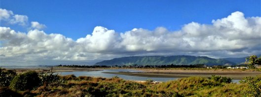 Waikanae estuary late afternoon KW