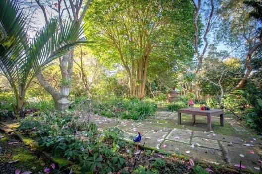 Waikanae garden 2