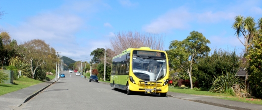 Winara bus